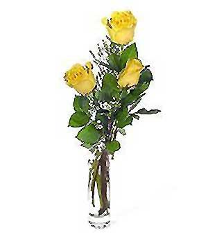 Bingöl Gölüm Çiçek internetten çiçek siparişi  3 adet kalite cam yada mika vazo gül