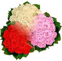 3 renkte gül seven sever   Bingöl Gölüm Çiçek çiçek , çiçekçi , çiçekçilik