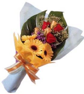 güller ve gerbera çiçekleri   Bingöl Gölüm Çiçek çiçek gönderme sitemiz güvenlidir