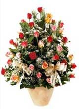91 adet renkli gül aranjman   Bingöl Gölüm Çiçek çiçek gönderme sitemiz güvenlidir