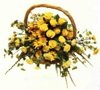 sepette  sarilarin  sihri  Bingöl Gölüm Çiçek cicekciler , cicek siparisi