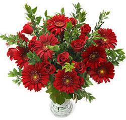 5 adet kirmizi gül 5 adet gerbera aranjmani  Bingöl Gölüm Çiçek hediye çiçek yolla