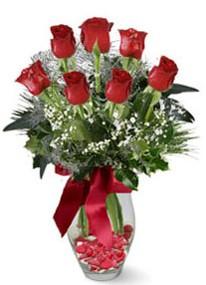 Bingöl Gölüm Çiçek internetten çiçek siparişi  7 adet kirmizi gül cam vazo yada mika vazoda