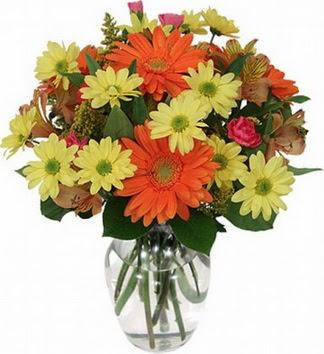Bingöl Gölüm Çiçek hediye sevgilime hediye çiçek  vazo içerisinde karışık mevsim çiçekleri
