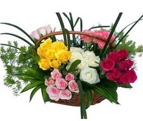 Bingöl Gölüm Çiçek ucuz çiçek gönder  35 adet rengarenk güllerden sepet tanzimi