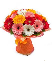 Renkli gerbera buketi  Bingöl Gölüm Çiçek anneler günü çiçek yolla