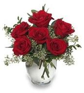 Vazo içerisinde 5 adet kırmızı gül  Bingöl Gölüm Çiçek çiçekçi mağazası