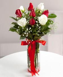 5 kırmızı 4 beyaz gül vazoda  Bingöl Gölüm Çiçek cicekciler , cicek siparisi
