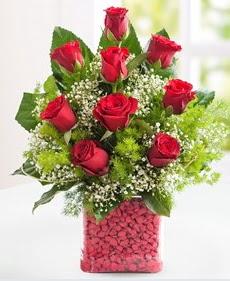 Cam içerisinde 9 adet kırmızı gül  Bingöl Gölüm Çiçek internetten çiçek satışı