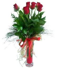 vazo içerisinde 5 kırmızı gül  Bingöl Gölüm Çiçek güvenli kaliteli hızlı çiçek