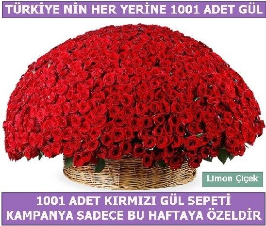 1001 Adet kırmızı gül Bu haftaya özel  Bingöl Gölüm Çiçek İnternetten çiçek siparişi
