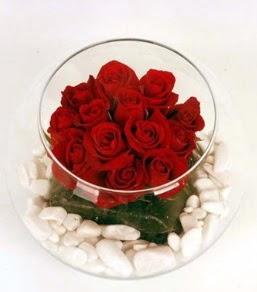 Cam fanusta 11 adet kırmızı gül  Bingöl Gölüm Çiçek çiçek gönderme