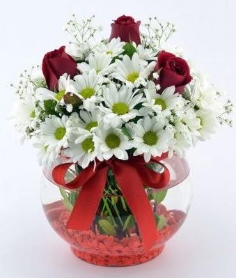 Fanusta 3 Gül ve Papatya  Bingöl Gölüm Çiçek internetten çiçek satışı