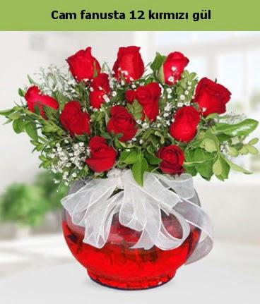 Cam içerisinde 12 adet kırmızı gül  Bingöl Gölüm Çiçek internetten çiçek satışı