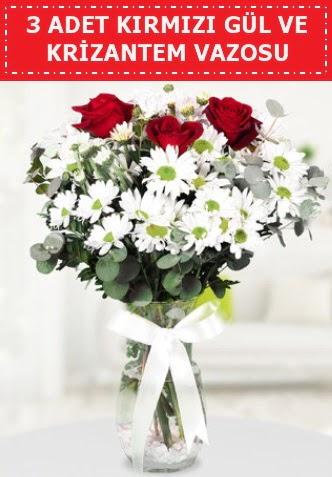 3 kırmızı gül ve camda krizantem çiçekleri  Bingöl Gölüm Çiçek çiçek gönderme
