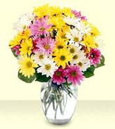 Bingöl Gölüm Çiçek internetten çiçek siparişi  mevsim çiçekleri mika yada cam vazo