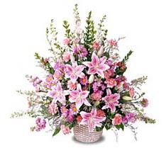 Bingöl Gölüm Çiçek çiçek siparişi sitesi  Tanzim mevsim çiçeklerinden çiçek modeli