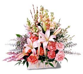 Bingöl Gölüm Çiçek çiçek siparişi sitesi  mevsim çiçekleri sepeti özel tanzim