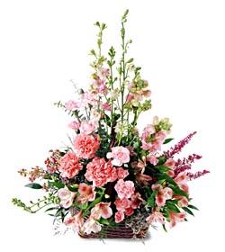 Bingöl Gölüm Çiçek ucuz çiçek gönder  mevsim çiçeklerinden özel