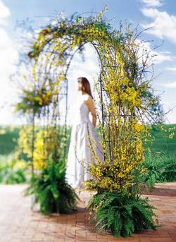 Bingöl Gölüm Çiçek internetten çiçek satışı  güller ve mevsim çiçegi