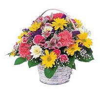 Bingöl Gölüm Çiçek çiçek , çiçekçi , çiçekçilik  mevsim çiçekleri sepeti özel