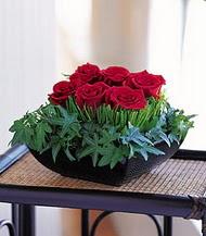 Bingöl Gölüm Çiçek çiçek siparişi sitesi  10 adet kare mika yada cam vazoda gül tanzim