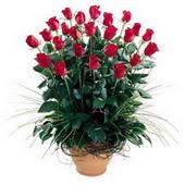 Bingöl Gölüm Çiçek uluslararası çiçek gönderme  10 adet kirmizi gül cam yada mika vazo