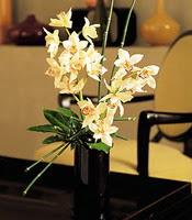 Bingöl Gölüm Çiçek çiçekçiler  cam yada mika vazo içerisinde dal orkide