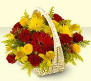 Bingöl Gölüm Çiçek 14 şubat sevgililer günü çiçek  sepette mevsim çiçekleri