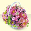 Bingöl Gölüm Çiçek yurtiçi ve yurtdışı çiçek siparişi  bir sepet dolusu kir çiçegi  Bingöl Gölüm Çiçek çiçek gönderme sitemiz güvenlidir