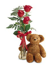 oyuncak ve güller tanzim   Bingöl Gölüm Çiçek çiçekçi telefonları