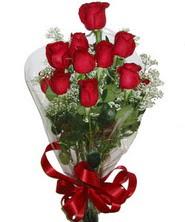9 adet kaliteli kirmizi gül   Bingöl Gölüm Çiçek online çiçekçi , çiçek siparişi