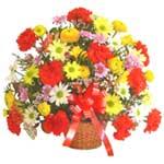 karisik renkli çiçek sepet   Bingöl Gölüm Çiçek çiçek gönderme sitemiz güvenlidir