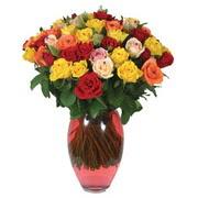 51 adet gül ve kaliteli vazo   Bingöl Gölüm Çiçek çiçek gönderme sitemiz güvenlidir