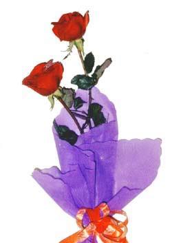 2  adet kirmizi gül buketi   Bingöl Gölüm Çiçek çiçek , çiçekçi , çiçekçilik