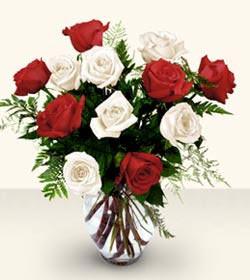 Bingöl Gölüm Çiçek uluslararası çiçek gönderme  6 adet kirmizi 6 adet beyaz gül cam içerisinde