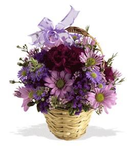 Bingöl Gölüm Çiçek uluslararası çiçek gönderme  sepet içerisinde krizantem çiçekleri
