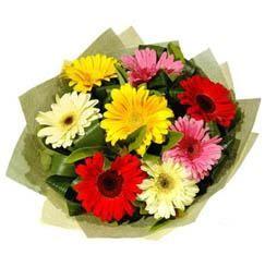 9 adet karisik gerbera demeti  Bingöl Gölüm Çiçek çiçek mağazası , çiçekçi adresleri