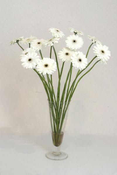 Bingöl Gölüm Çiçek çiçek mağazası , çiçekçi adresleri  cam vazo içerisinde 17 adet sade gerbera