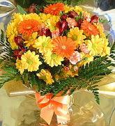 Bingöl Gölüm Çiçek hediye çiçek yolla  karma büyük ve gösterisli mevsim demeti