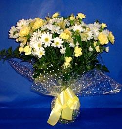 Bingöl Gölüm Çiçek hediye çiçek yolla  sade mevsim demeti buketi sade ve özel