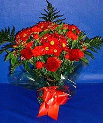 Bingöl Gölüm Çiçek hediye çiçek yolla  3 adet kirmizi gül ve kir çiçekleri buketi