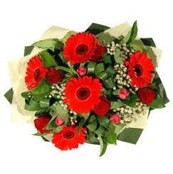Bingöl Gölüm Çiçek ucuz çiçek gönder   5 adet kirmizi gül 5 adet gerbera demeti
