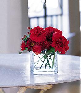 Bingöl Gölüm Çiçek ucuz çiçek gönder  kirmizinin sihri cam içinde görsel sade çiçekler
