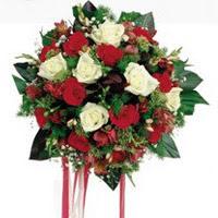 Bingöl Gölüm Çiçek ucuz çiçek gönder  6 adet kirmizi 6 adet beyaz ve kir çiçekleri buket