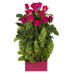 12 adet kirmizi gül aranjmani  Bingöl Gölüm Çiçek çiçek mağazası , çiçekçi adresleri
