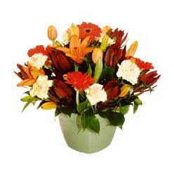 mevsim çiçeklerinden karma aranjman  Bingöl Gölüm Çiçek çiçek yolla , çiçek gönder , çiçekçi