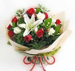 güller ve kazablanklardan görsel bir buket  Bingöl Gölüm Çiçek internetten çiçek satışı