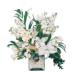Bingöl Gölüm Çiçek internetten çiçek siparişi  sadece beyazlardan olusmus mevsim cam yada mika tanzim