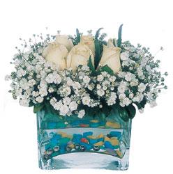 Bingöl Gölüm Çiçek çiçekçi mağazası  mika yada cam içerisinde 7 adet beyaz gül